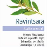 PHYSALIS-ESENCIA RAVINTSARA 30 ML BIO